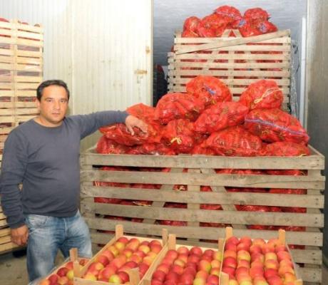 Povrtlari traže zabranu uvoza ranog povrća iz Italije i Španije